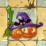Pumpkin Witch Costume2