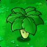 Umbrella Leaf1.png