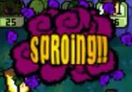 DS SPROING!