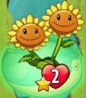 TwinSunfloweronLilyPad