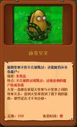 Vine-nut almanac entry