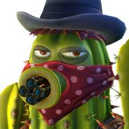 Cactus BandidoW