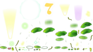 PLANTHYDROCOTYLEDRUMMER 1536 00 PTX