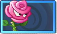 Roseswordman Rare Seed Packet