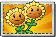 Twin Sunflower Boosted Seed Packet