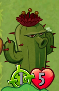 CactusTintedGray