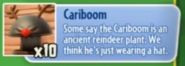 Cariboom description