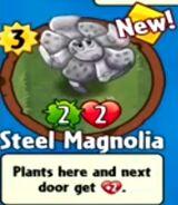 Receiving Steel Magnolia