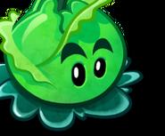 CabbagePultCardImage