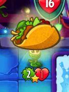 Taco on Mayflower