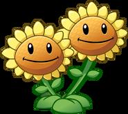 Twin Sunflower HD