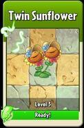 TwinSunflowerLevelUp
