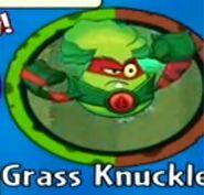 Receiving Grass Knuckles