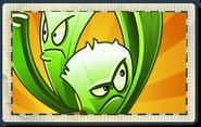 Celery Stalker Boosted Seed Packet