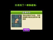 IMG 6488