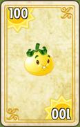 Solar Tomato Endless Zone Card