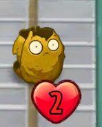 Second degrade Wall-Nut