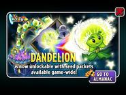 Hot Tips Dandelion