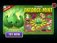 Introducing Enforce-mint with Melee Plants
