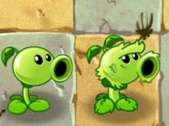Primal Peashooter along with it's modern counterpart