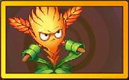 Bromelblade Legendary Seed Packet