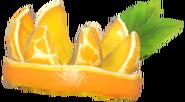 Cactus orangeburst 4