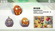 Chinese Explode-o-nut