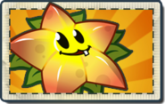 Starfruit Boosted Seed Packet