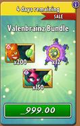 Valenbrainz Bundle 2021 After