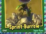 Sprint Burrow