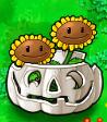 Twin Sunflower Imitater pumpkin