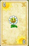 Marigold Endless Zone Card