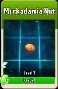 Murkadamia Nut Level Up
