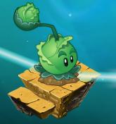 Cabbage-pultonmap