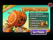 Tumbleweed Ad