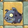 Zombie Piggy