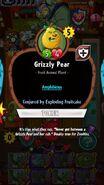 Grizzlyconjuredfruitcake