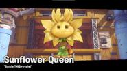Sunflower Sovereign BfN