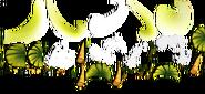 Banana Tree Textures
