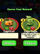 Choice between Zapricot and Sage Sage