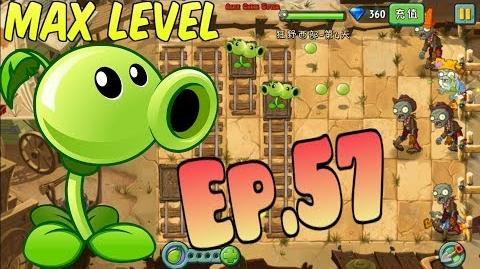 Plants vs. Zombies 2 (Chinese) Peashooter - 5 MAX Level - Level Up Wild West Day 4 (Ep