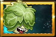 Headbutter Lettuce Premium Seed Packet