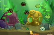 Ms aquarium