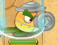 Super Citron attack