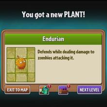 Endurian Unlocked.png