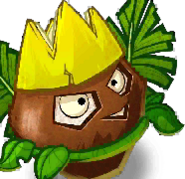 King Coconut card face