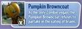 PumpkinBrowncoatDescrtiption