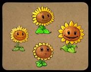 PvZ2 Sunflower concept sheet - ArtofReanimPvZ2