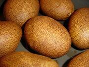 Russet potato.jpg