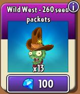Wild West Piñata Store New